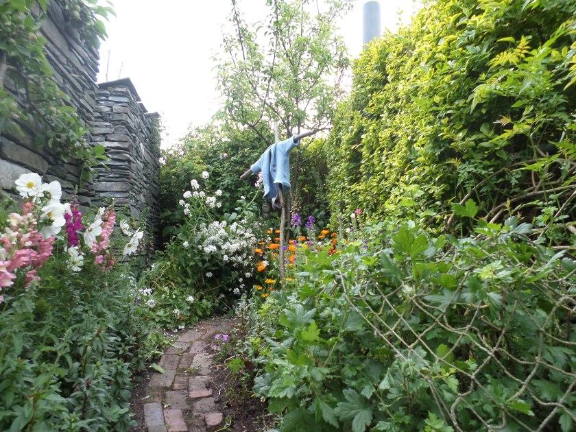 Peter Rabbit jacket in the garden.