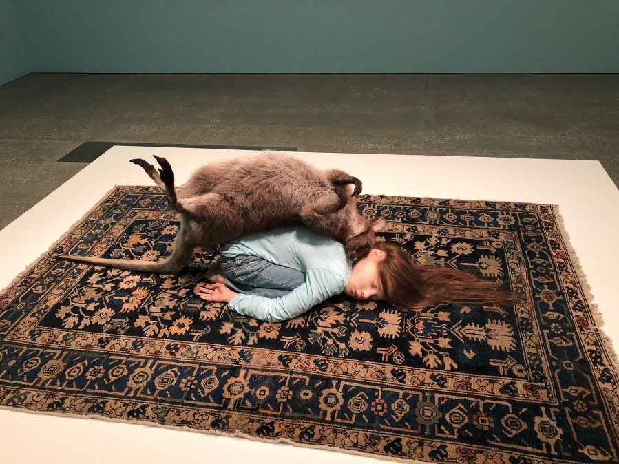 Patricia Piccinini Curious Affection – Gallery of Modern Art (GOMA)
