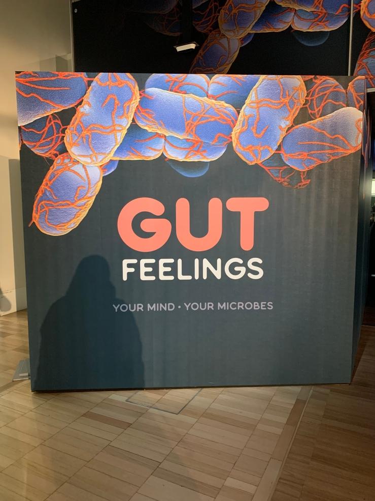 Gut Feelings Exhibition Opening Panel