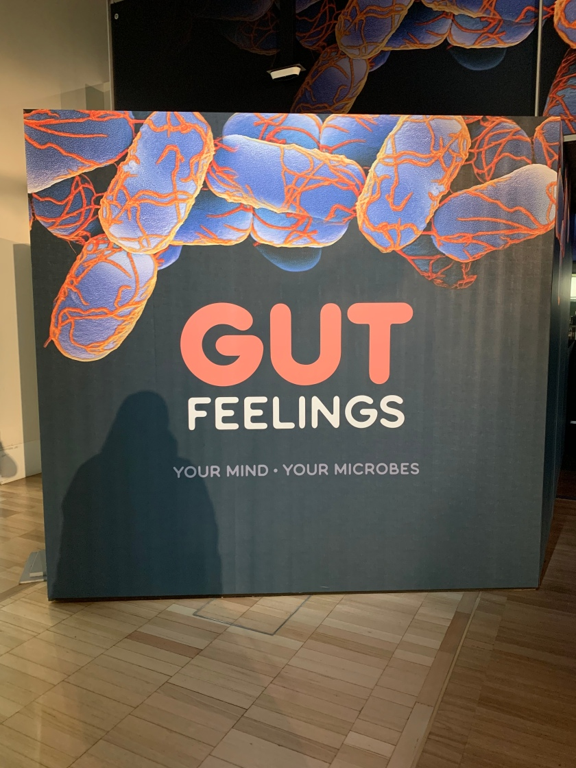 Gut Feelings Exhibition Opening Panel