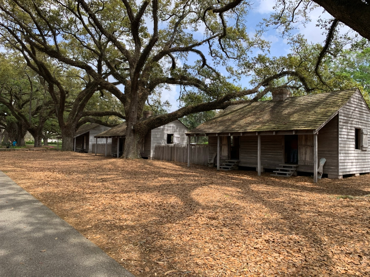 Oak Alley Plantation and Whitney Plantation